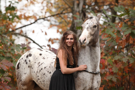 appaloosa: Pretty young woman with appaloosa horse in autumn
