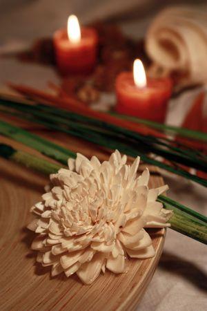 a potpourri flower Stock Photo