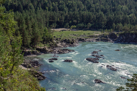 Katun river in altai flows between mountains covered with greenery