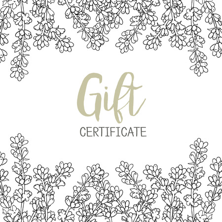 fragrant bouquet: Lavender. A template of the gift certificate for flower shop, a card or the invitation.  Graphics Illustration