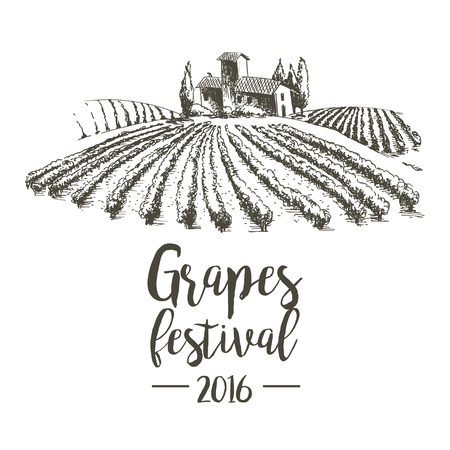 Grapes festival. Lodge with vineyards. Illustration for design.