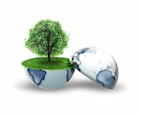 planeta verde: árbol dentro de la tierra aislada en un fondo blanco