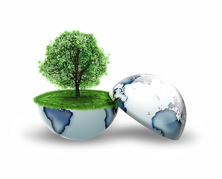 recycling plant: tree inside the earth isolated on a white background Stock Photo
