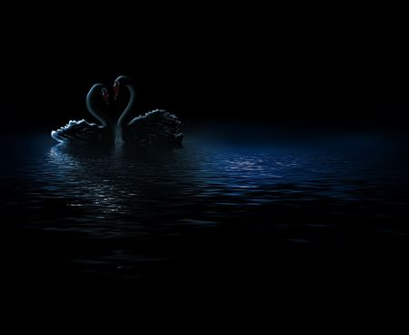 elegant abstract background with pair of swans in the dark Stock Photo - 7362240