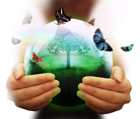 human hand and multicolored butterflies grass and a symbol of the environment collage  photo