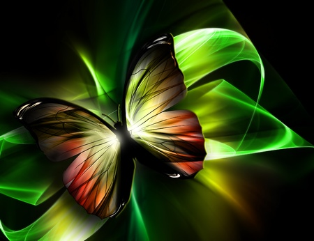 iridescent: elegant beautiful butterfly on a dark background