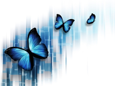yellow butterfly: elegant blue abstract background with butterflies