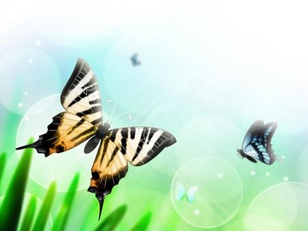 Fondo de verano abstracto con mariposas en el fondo del cielo borrosa