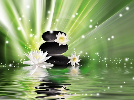 yellow stone: dark stones and lily flowers on the water surface