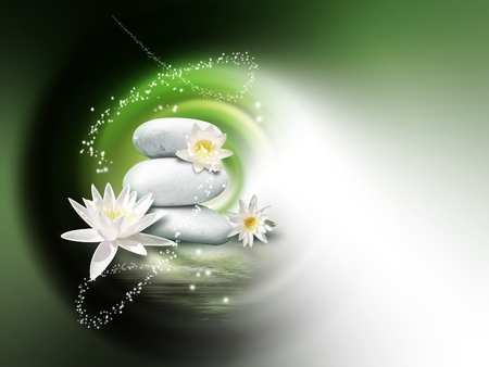 piedras brillantes y flores de lis en la superficie del agua