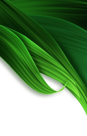 abstract background with green grass closeup photo