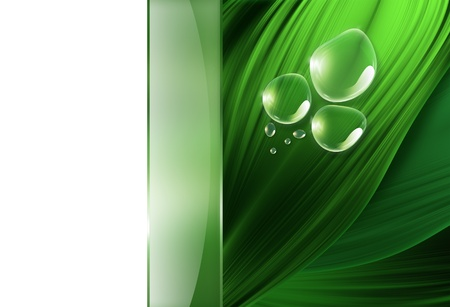 abstract background with drops of dew on the green grass photo