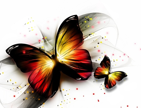 yellow butterflies: two elegant beautiful butterflys on a light background Stock Photo
