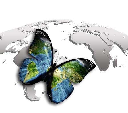 erde gelb: Schmetterling mit einer Weltkarte auf den Fl�geln gegen die graue Karte Lizenzfreie Bilder