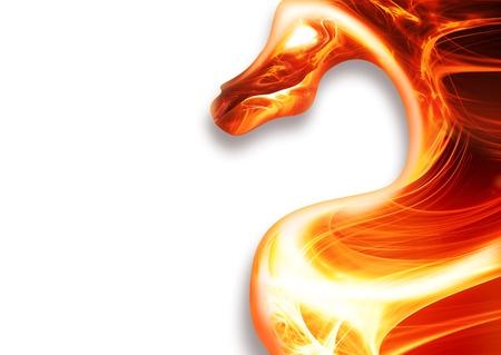 dragones: dragón de fuego abstracto sobre un fondo blanco