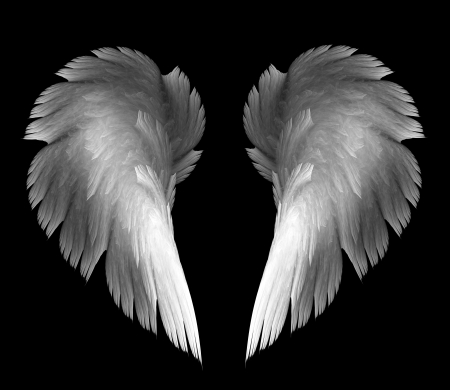 light angel wings on a black background Stock Photo