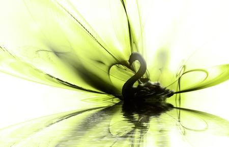cisnes: hermoso cisne negro sobre fondo oscuro abstracto
