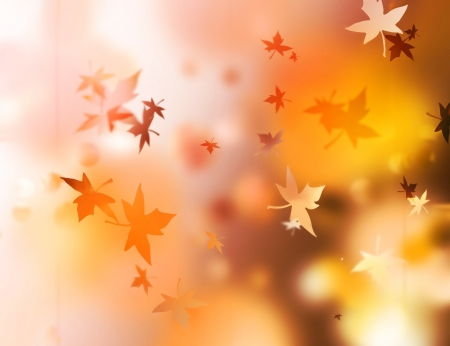Autumn background with red and yellow maple leaves photo