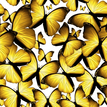 yellow butterfly: bright background with yellow butterflies Stock Photo