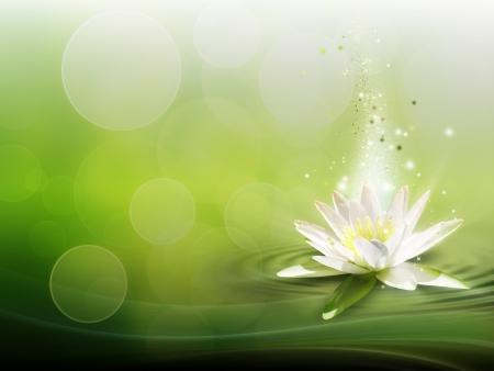 水ユリの自然な背景 写真素材