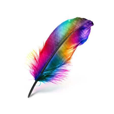 green ink: colorful feather on white background