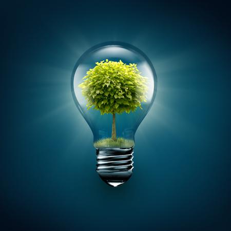 energías renovables: bombilla con el interior del árbol sobre un fondo azul