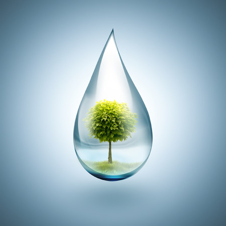 drop of water with tree inside - environmental concept