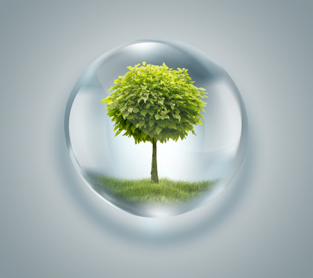 clean water: drop of water with tree inside - environmental concept