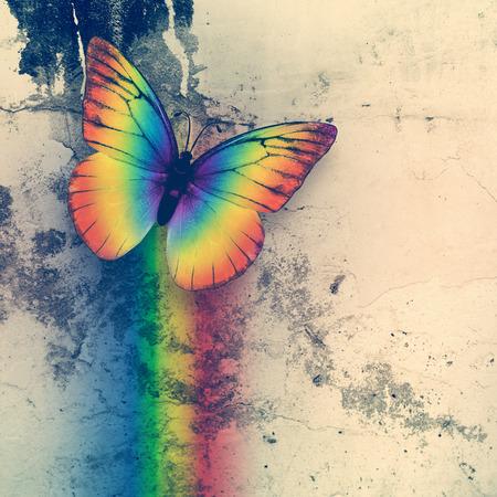 grange: bright rainbow butterfly on dirty grange wall