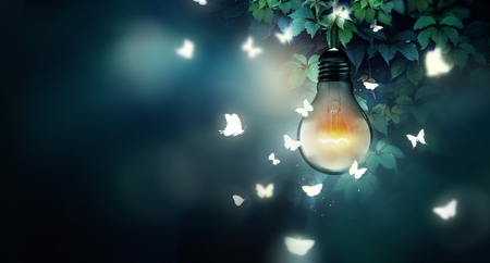 butterflies flying: luminous bulb and butterflies flying on light