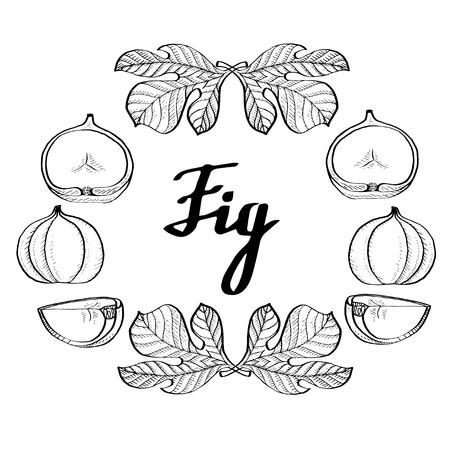 Affiche de figue monochrome de calligraphie, logo pour le web, textile, marque Logo