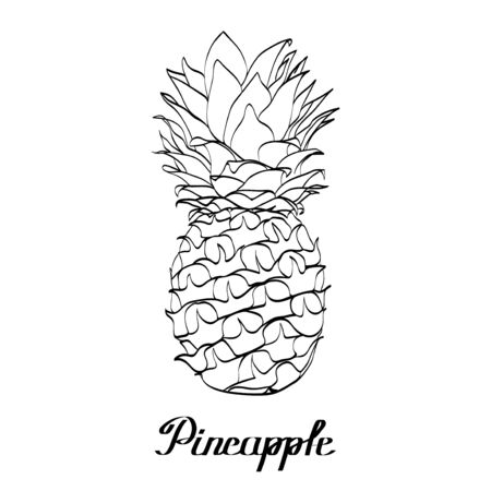 Vector path natural pineapple with ink text 向量圖像
