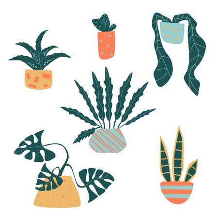 Set of funny vector houseplant in pots 向量圖像
