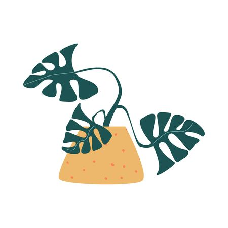 Funny cartoon flat vector monstera in pot