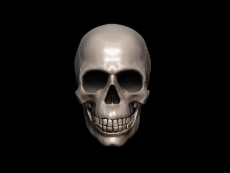 This picture depicts a skull photo