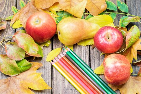 Vignette of dry leaves with fresh ripe fruits and coloful pencils in the center. Autumn colorful harvest concept.