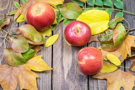 Some ripe red apples with dry various leaves on the natural wooden background. Autumn harvest concept.