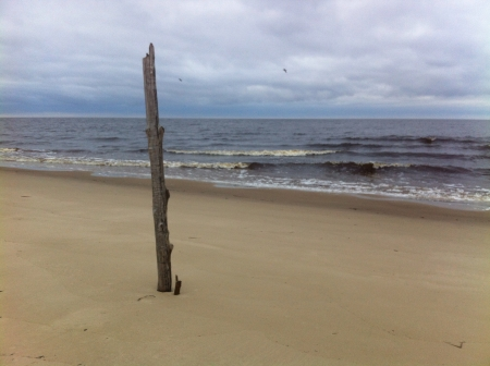 shamanic: A vertical pole set up in the beach shamanic practice.