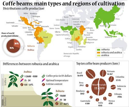 Informations sur le café. Les grains de café: principaux types et la région de culture.