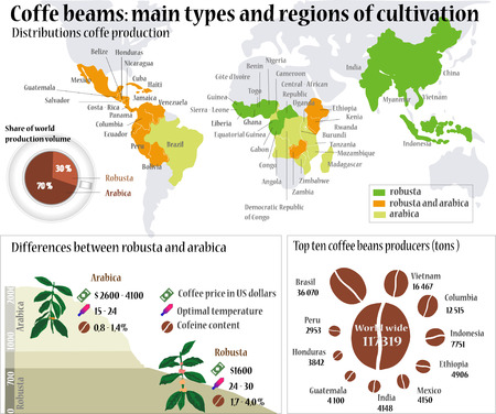 Coffee info. Coffee beans: Main types and region of cultivation.