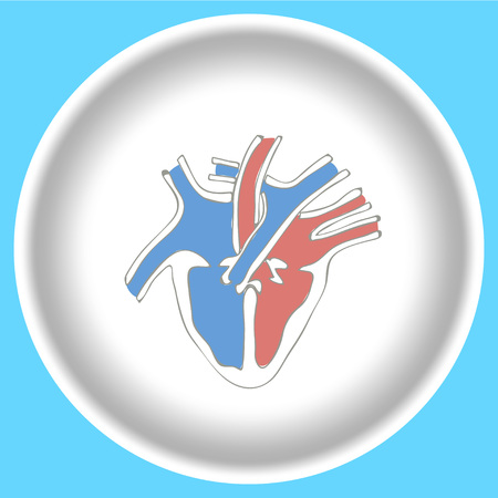 cutaway drawing: Icon Human heart anatomy on a white plate isolated on light blue background.