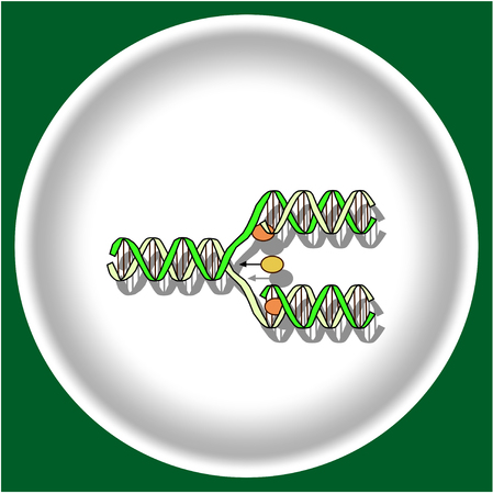 Icon replication DNA on white plate Illustration