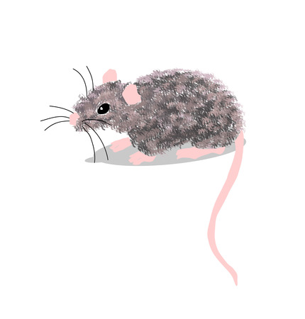 Mouse gray isolated on white background vector illustration