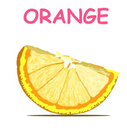 Orange fresh fruite card isolated on white background. vector education lemon lime card illustration.