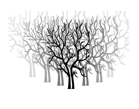 forest with naked trees isolated on white background. Ilustrace