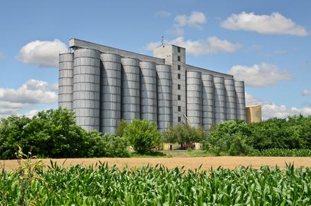 Silo's en maïs boerderij