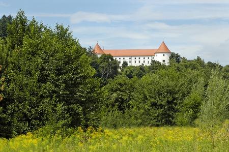 Slovenian castle Stock Photo
