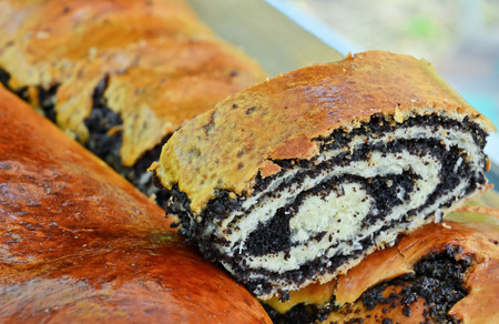 home baked: Home baked Poppy Seed Strudel Stock Photo