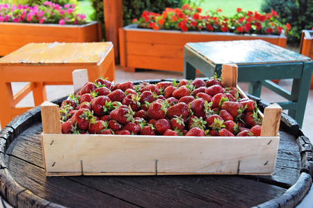 fruitage: Fresh strawberries in wooden box