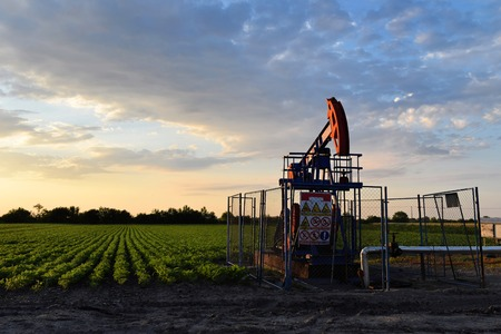 oil well pumper: A crude oil pump and agricultural farmland during sunset time -  dirty Stock Photo